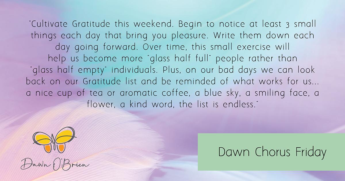 AWN_O_BRIEN-Dawn_Chorus-cultivate_gratitude-blog